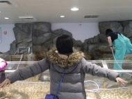 Channeling my inner penguins